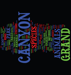 Grand canyon animals text background word cloud vector