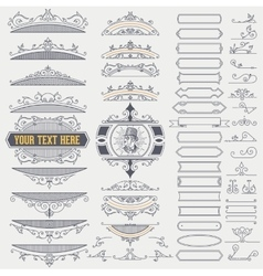Kit of Vintage Elements for Banners Invitations vector