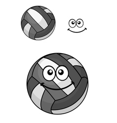 Two volleyball balls vector