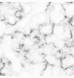 White and gray marble texture background vector