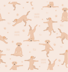 yoga dogs poses and exercises labrador retriever vector image