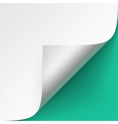 Curled corner of paper on Green Background vector image vector image