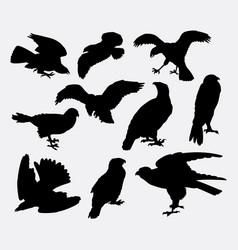 falcon eagle and hawk bird silhouette vector image