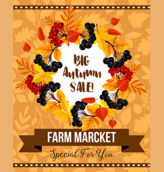 Autumn sale banner with fall leaf and berry wreath vector
