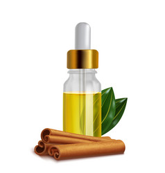 Cinnamon oil bottle with sticks and leaves in vector