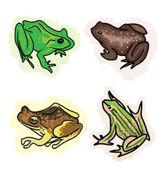 Four different type of frogs vector