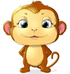 monkey sitting on a white background vector image