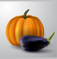 pumpkin and eggplant vector image