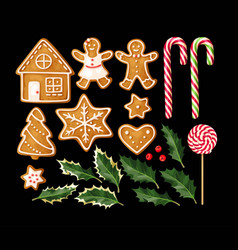 Set of gingerbread cookies vector