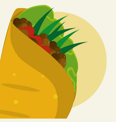 Burrito mexican food vector