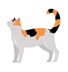 Calico cat flat design vector
