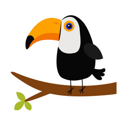 cute toucan toco on tree brunch big yellow vector image