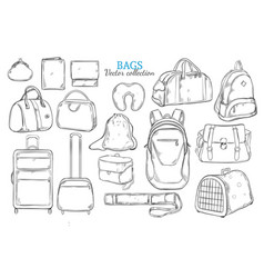 hand drawn travel bags set vector image