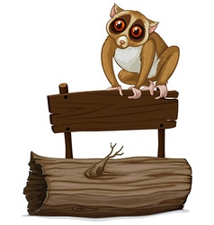 Loris standing on wooden sign vector