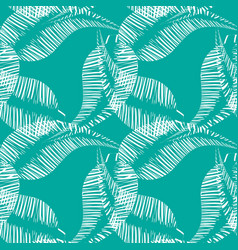 pattern of white feathers and leaves on azure vector image