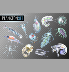 Plankton transparent set vector