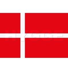 Word hygge on denmark flag vector