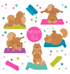 Yoga dogs poses and exercises pomeranian clipart vector