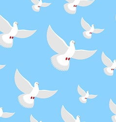 White Dove blue sky seamless pattern Flying in air vector image vector image
