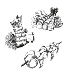 Seafood shrimps vector