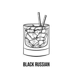 black russian cocktail vector image