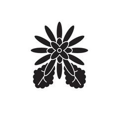 chrysantemum black concept icon vector image
