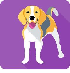 Dog Beagle icon flat design vector