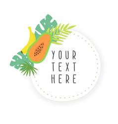 fruit sticker template vector image