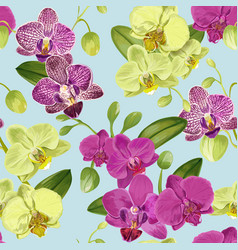 Seamless tropical pattern with orchid flowers vector