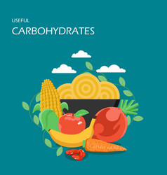 useful carbohydrates flat style design vector image