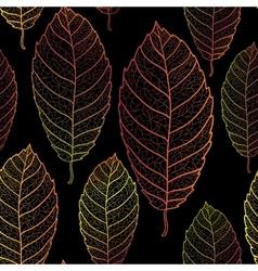 Autumn transparent leaves pattern background vector image