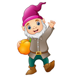 cute garden gnome with pumpkin vector image