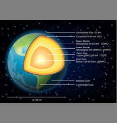 earth structure diagram vector image