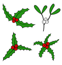 set of different mistletoe vector image