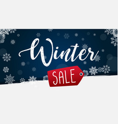 winter sale banner with snowflake background vector image
