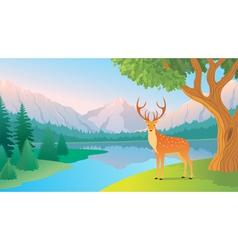 Mountain lake vector image vector image