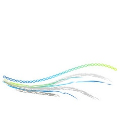 dna wave on the white vector image vector image