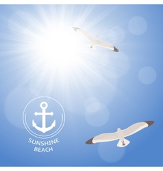 Shining summer sun with seagulls vector image vector image
