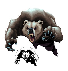 angry brown bear vector image