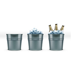 Beer bottles in metal bar ice bucket for cool vector
