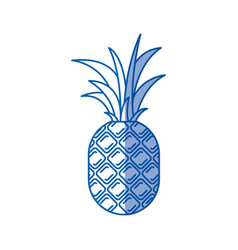 Blue shading silhouette of pineapple fruit vector