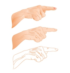 Human hand right pointer three color drawing vector image