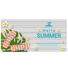 hello summer background with sea elements vector image