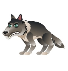 Wolf in cartoon style closeup isolated vector image vector image