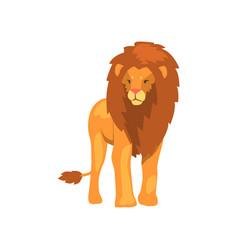 powerful lion wild predatory animal vector image vector image