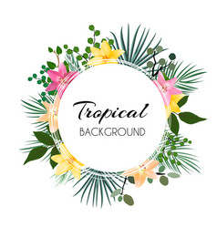 Abstract natural tropical frame background with vector