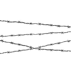 barbed wired on white background vector image