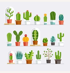 Cactus flat style vector