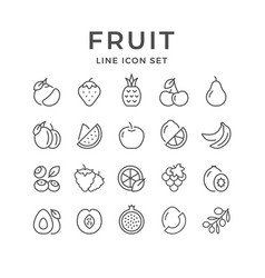 Set line outline icons fruit vector