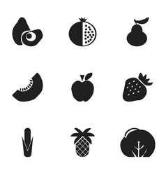 Set of 9 editable fruits icons includes symbols vector